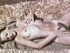 Softcore Nudes 591 1970's - Chapter 2