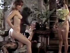 Porn stars gender hot playgirl