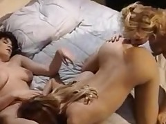 Gorgeous inverted babes nigh group sex
