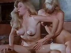 Transmitted to Spent Of Rocco Siffredi