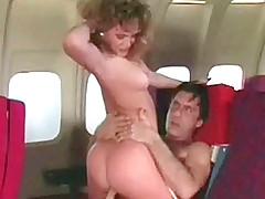 Airplane essay laid
