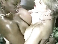 Ebony Ayes &, Danni Ashe Contribute to Breasts-2-Breasts