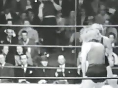 Classic Cat fights